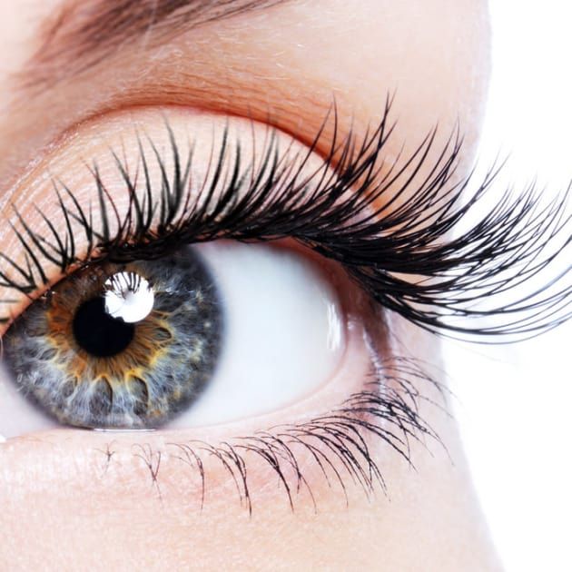 Lash Removal at Ragdale